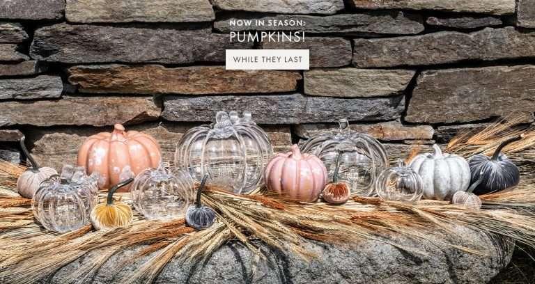 hero-desktop-1600_x_850-pumpkins-new_1_